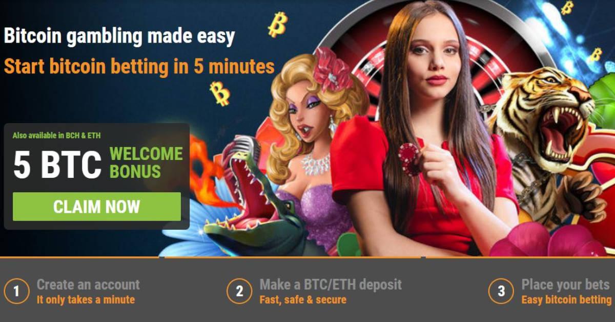 Top online casino software providers